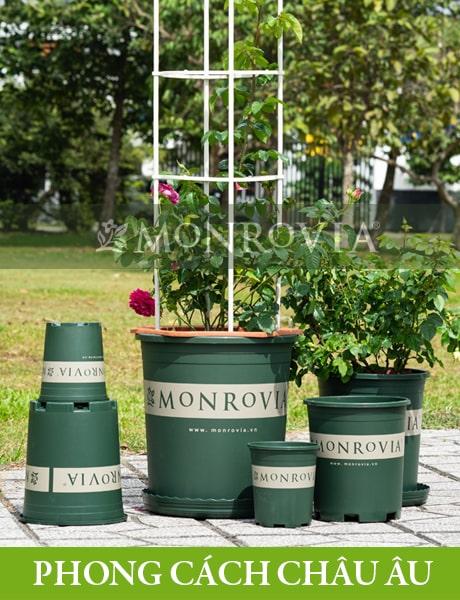 Chậu nhựa trồng cây Monrovia, chậu trồng cây, chậu cây cảnh mini, để bàn, treo ban công, treo tường, cao cấp, phong cách châu âu 2-min