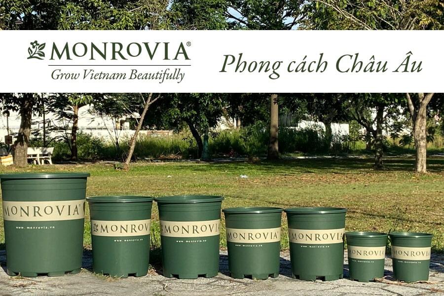 Thương hiệu chậu trồng cây Monrovia uy tín