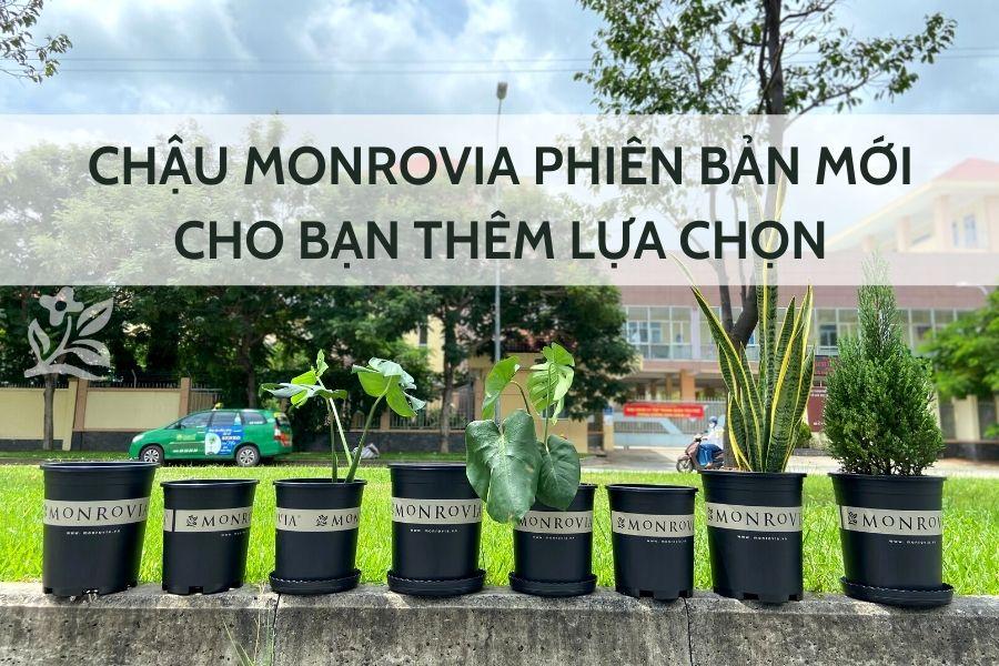 chau-monrovia